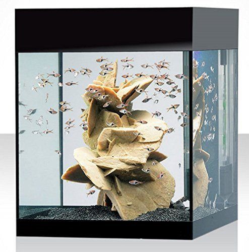 Askoll Aquarium-Set M Absolute, Schwarz