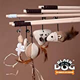 BLACK DOG Cats Toys for Cat Teaser Playing Stick Feather Interactive Toy- Design