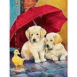 Pintura Por Numeros Diy Dog Set Painting Animal Wall Painting Decoración Para El Hogar A8(40X50Cm Sin Marco)