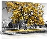 Kunstdruck auf Leinwand, Motiv Baum mit gelben Blättern,
