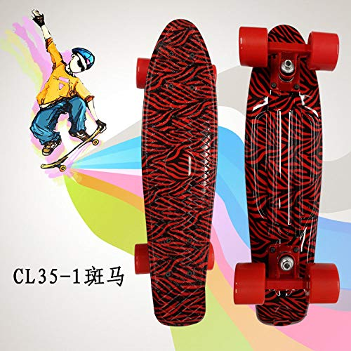 zzzddd Cruiser,Roter Zebrakreuzer Kunststoff Vierrädriges Kleines Fisch-Skateboard Road Single Tilt Skateboard, Leichtes Tragbares Classic Child Adult Outdoor-Sport Brush The Street Skateboard