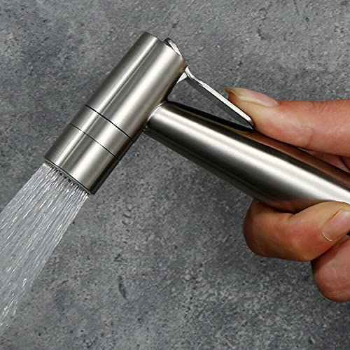 PengTrible Stainless Steel Brushed Nickel Large discharge 5 ☆ popular sale Two Function Handheld