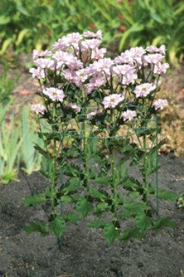 Bosmere E63045cm Durchmesser 63cm Beine, Medium Flower Frame