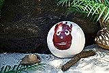 Zoom IMG-2 wilson palla da pallavolo castaway