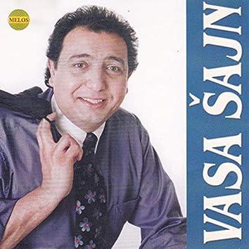 Vasa Sajn