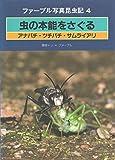 虫の本能をさぐる (ファーブル写真昆虫記)