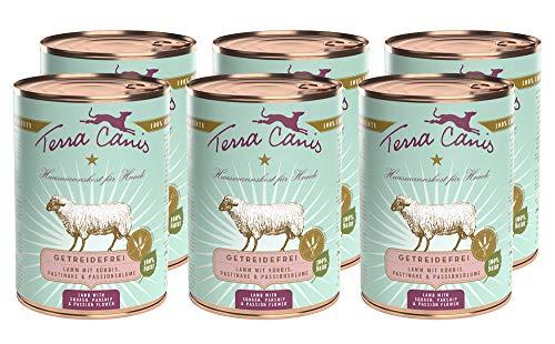 Terra Canis Getreidefreies Nassfutter I Reichhaltiges Premium Hundefutter in echter Lebensmittelqualität mit Lamm, Kürbis & Pastinake I 6 x 400g, allergenarm & glutenfrei