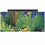 SeaClear 30 GAL Show Acrylic Aquarium Combo Set, 36 by 12 by 16', Black