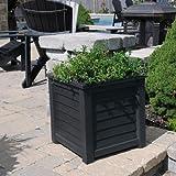 Lakeland Square Planter Box Color: Espresso, Size: 20' H x 20' W x 20' D
