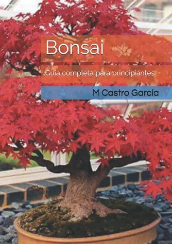 Bonsai: Guía completa para principiantes