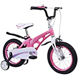 DFLKP Bicicleta para niños de 3 a 9 años 12 14 16 Bicicletas de 18 Pulgadas Bicicletas con Ruedas de Entrenamiento y Guardabarros, Bicicleta para niños,Rosado,16 Inch