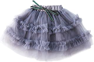 ALLAIBB Baby Girl Tutu Skirt Princess Tulle Lace Ruffles Cake Smash Short Birthday Size 18M (Gray)