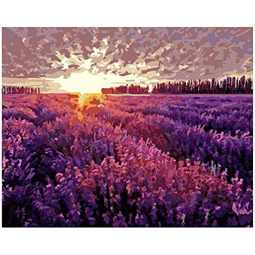 Pintura Al Óleo Digital Sin MarcoDiyDecoración Del Hogar Pintura Campo De Lavanda Púrpura Pintado A Mano Regalo Pintado Pigmento Relleno40X50Cm