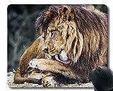 Alfombrilla de ratón Antideslizante, león Grande Gato sobresaliente de la lengüeta 172344 Alfombrilla de ratón