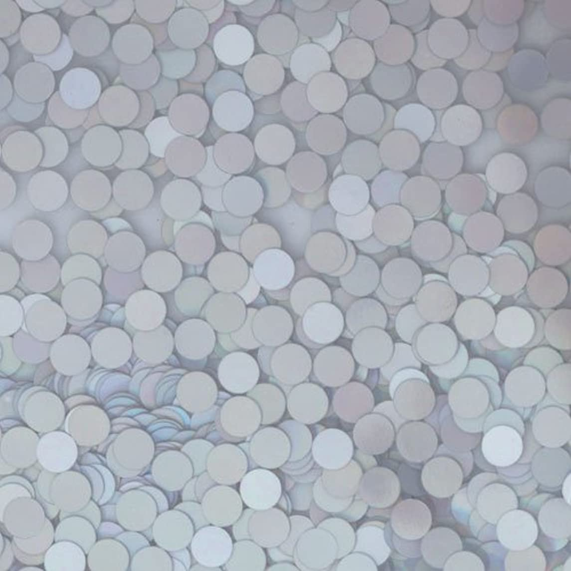 リーオートメーション販売員ピカエース ネイル用パウダー ピカエース 丸ホロ 1.5mm #883 マットシルバー 0.5g アート材