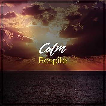 Calm Respite, Vol. 5