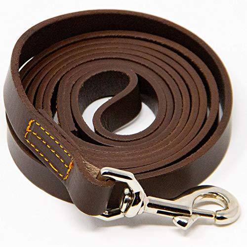 Logical Leather Dog Leash