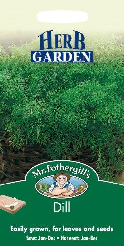 Mr Fothergills???Flux des paquets???herbes aromatiques???Aneth???750?graines