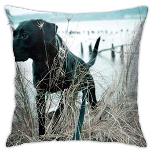 Funda de almohada para sofá, cojín y perro, diseño cuadrado, moderno, ideal para decorar sofá, oficina, dormitorio, sala de estar, 55,8 x 55,8 cm