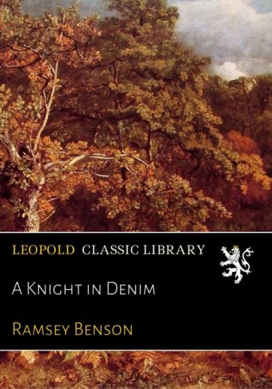 ひねり道に迷いました安定A Knight in Denim