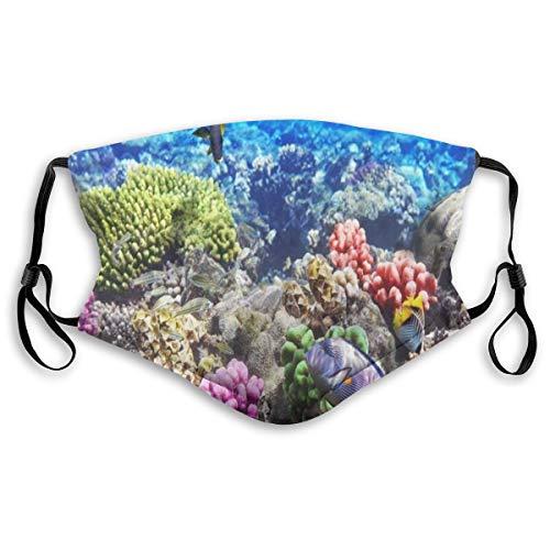 KOSALAER Face Cover Lot Hurghada Riff Korallenfisch Rot Ägypten Tiere Tierwelt Natur Ozean Leben Aquarium Hawaii Unter Wasser Wiederverwendbare Anti-Staub-Mund-Bandanas mit 2 Filtern