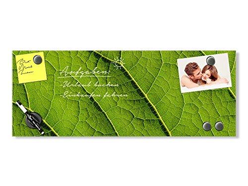 GRAZDesign magneetbord glas blad - prikbord groen - memoboard liggend formaat / 501872 60x20cm