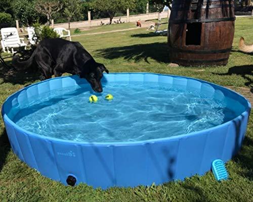 pecute Schwimmbad Für Katzen Bild