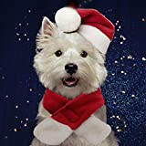 PULEIDI Pet Dog Cat Santa Hat Costume - Christmas Cat Costume with Hat and Scarf for Small Dogs,...