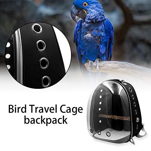 wisedwell Haustier Rucksack Vogel Atmungsaktiv Papagei Rucksack Transparente Rutschfester Anti-Verloren Käfig mit Reißverschluss für Papagei Vogel