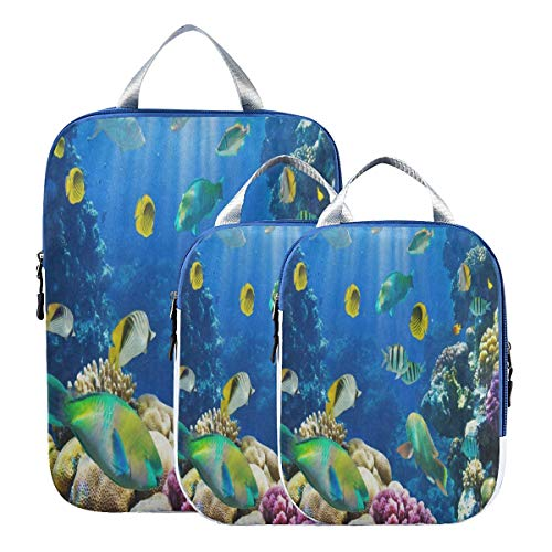 Suitcase Organizer Bags Set Tropical Fish On Coral Reef Luggage Packing Cubes Travel Organizers 3pcs