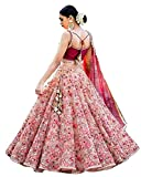 FotoableArc Women\s Embroidered Pink Semi Stitched Lehenga Choli (X-FreeSize)