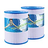 TOREAD NSF-50 Certified Watkins 31114 Replacement Tiger River Spa Filter, Compatible Unicel C-8465, PWK65, Filbur FC-3960, 71827, 71828 Hot Tub Filter, 65 sq. ft Hot Spring Spa Filter (2)
