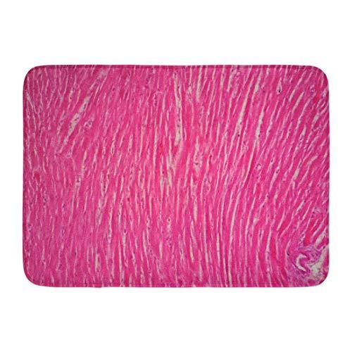 YnimioHOB Fußmatten Badteppiche Outdoor/Indoor Türmatte Gewebehistologie des menschlichen Herzmuskels unter dem Mikroskop Blick Herz Glatt Badezimmer Dekor Teppich Badematte