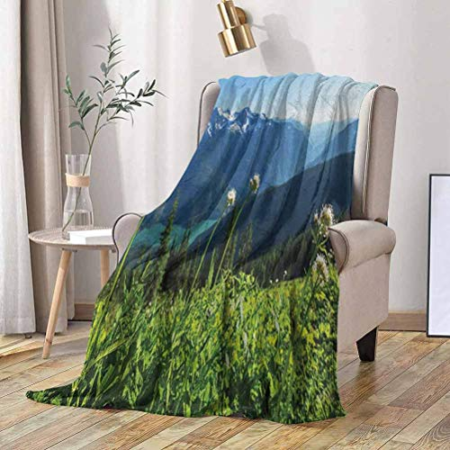 RenteriaDecor Nature Soft Blanket Diablo Lake Washington Mountains Dandelions Thistle Flowers Wilderness Image 50x60 Inch Spring Summer Autumn Throws for Couch Bed Sofa