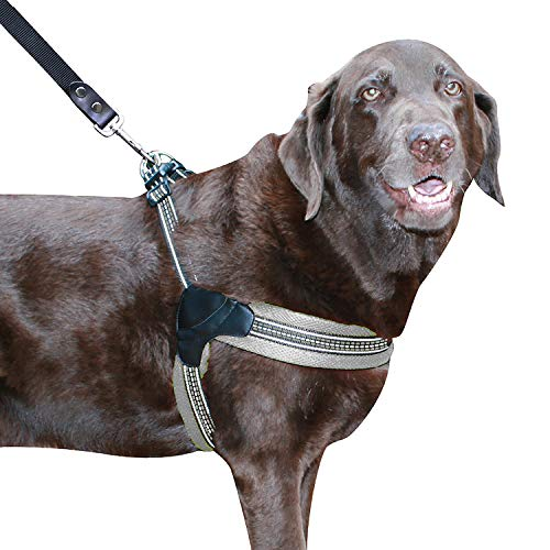 Sporn Easy Fit Dog Harness, Mesh, Gray, Large