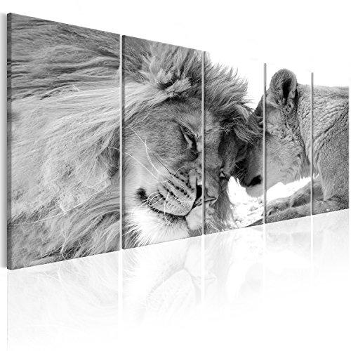 murando - Cuadro en Lienzo León 200x80 cm Impresión de 5 Piezas Material Tejido no Tejido Impresión Artística Imagen Gráfica Decoracion de Pared Naturaleza Animal Paisaje g-B-0061-b-p