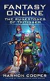 Fantasy Online: The Runestones of Tritinakh: A LitRPG Saga