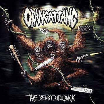 The Beast Bites Back