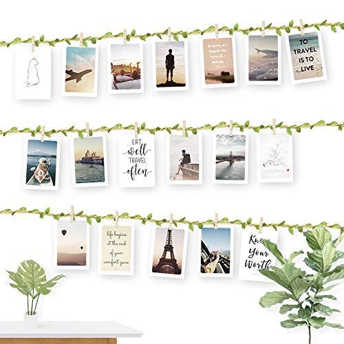 ecooe Fotoseil mit Grünes Blatt für Kreative und Schöne Dekoration DIY Bilderrahmen Wanddekoration 3 Meter Fotoleine mit 30 Mini-Holz-Klammern und 10 spurlosen Nägeln Fotoaufhängung