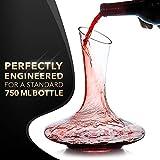 Le Chateau Weindekanter–100% mundgeblasenes bleifreies Kristallglas, Rotweinkaraffe, Weingeschenke, Weinzubehör - 5