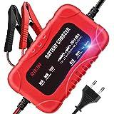 RIKIN Chargeur de Batterie Auto 2A / 12V Chargeur Moto Intelligent Rapide Portable avec Multiples Modes de Charge de Protection pour Batterie de Voiture Moto
