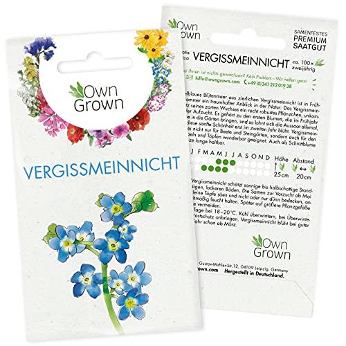 Vergissmeinnicht Samen: Premium Vergissmeinnicht Blumen Samen für ca. 100 blühende Vergiss Mein Nicht Pflanzen mehrjährig – Blumensamen Vergissmeinnicht Saatgut – Vergiss Mein Nicht Samen von OwnGrown