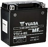 Yuasa YTX14-BS(WC) Batería sin mantenimiento