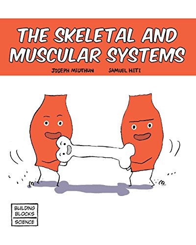 Skeletal and Muscular Systems (Building Blocks of Life Science 1/Soft Cover)