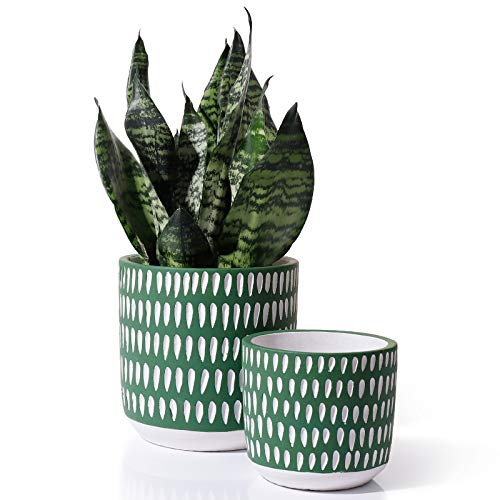 Cement Planters Pots for Plants Indoor - 6 + 4.5 Inch Indoor Concrete Vintage Style Dot Patterned Planters Bonsai Container with Drainage Hole(POTEY 055602, Plants NOT Included)