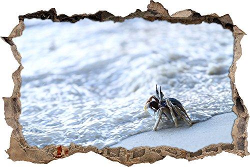 pixxp Blueprint 3D WD s1053_ 62x 42zierliche Cangrejo en la Playa perforar Pared Adhesivo Pared en 3D, Vinilo, Multicolor, 62x 42x 0,02cm