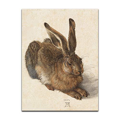 Bilderdepot24 Bild auf Leinwand Alte Meister | Albrecht Dürer - Feldhase in 30x40 cm als Wandbild | Wand-deko Dekoration Wohnung modern Bilder |180103