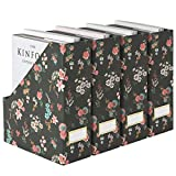 Blu Monaco Foldable Magazine File Holder with Gold Label Holder - Set of 4 Cardboard Magazine Organizers and Storage - Floral and Black Magazine Holder - Magazine Organizer