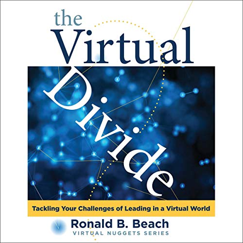 The Virtual Divide audiobook cover art