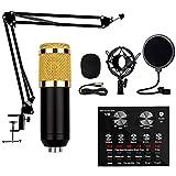 YQGOO Microfono de Condensador Kit, BM-800 Micro Set Estudio Profesional, Tarjeta de Sonido V8 Recargable con 12 Tipos de música de Fondo Auxiliar Cardioide Micrófono para PC,Grabar,Gaming,Podcast